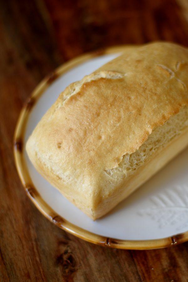 Molde Maiz